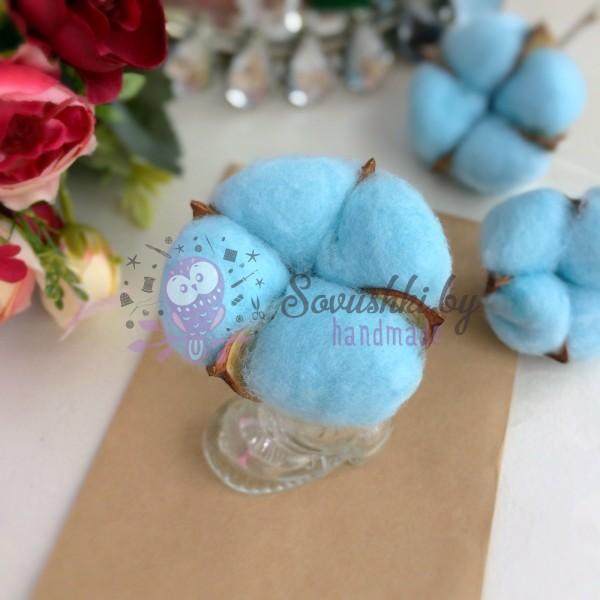 Сухие цветы хлопка, небесно-голубой