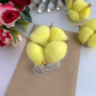 Сухие цветы хлопка, желтый