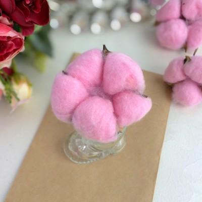 Сухие цветы хлопка, розовый