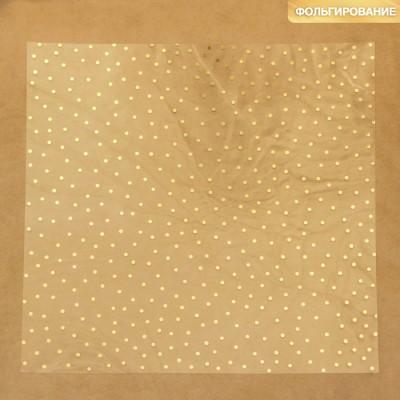 Ацетатный лист с фольгированием «Золотой горошек»